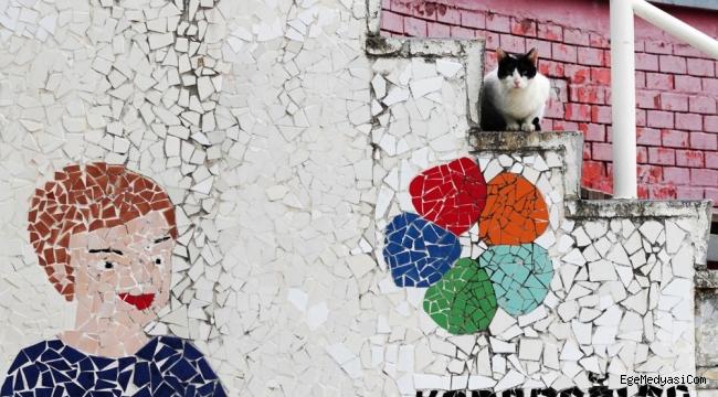 Karabağlar'da kısırlaştırma tam gaz devam