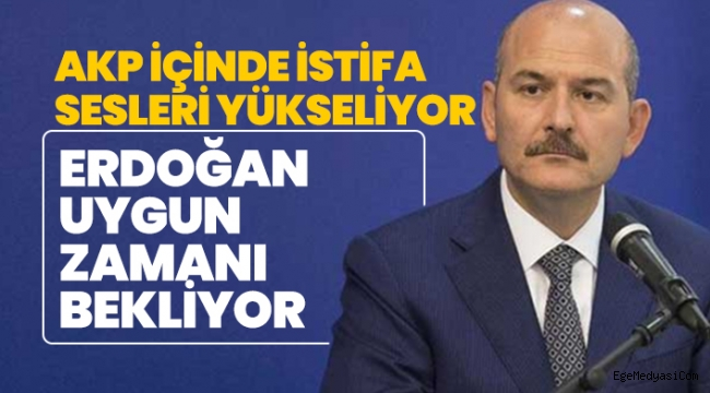 AKP'de Soylu yüzünden istifa sesleri yükseliyor
