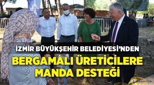 İzmir Büyükşehir Belediyesi'nden üreticilere manda desteği