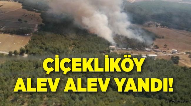 İzmir'de Çiçekliköy alev alev yandı!