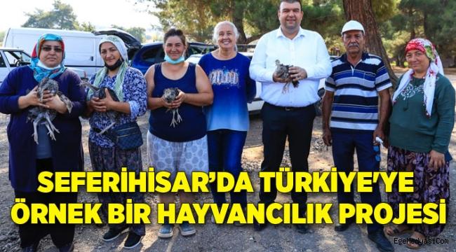 Seferihisar'dan Türkiye'ye örnek bir hayvancılık projesi