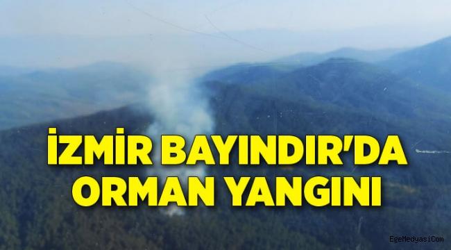 İzmir Bayındır'da orman yangını