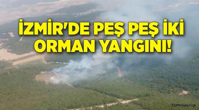 İzmir'de iki orman yangını