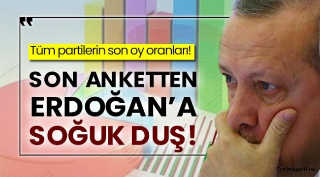 Son ankette Erdoğan'a soğuk duş!